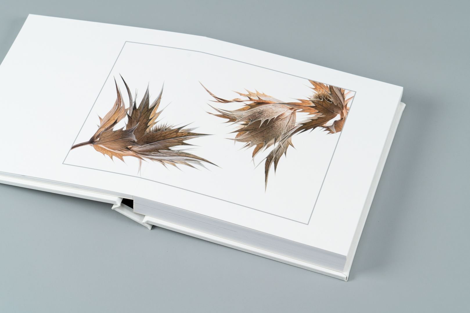 Photo books for fine art photographers